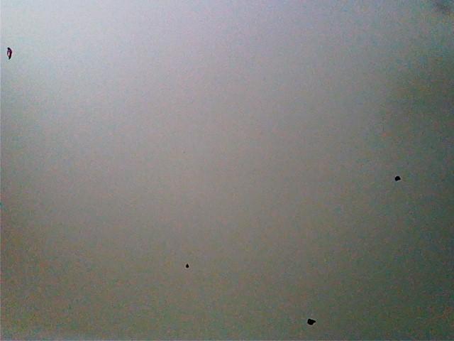 черные точки при фото на айфоне витом металлическом